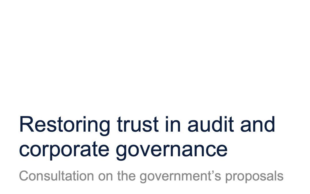 """A hotchpotch of pet ideas"" – White Paper on audit & governance"